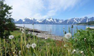 Millor reportatge 'Nord de Noruega, última frontera'