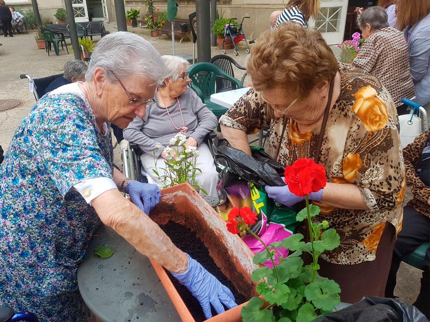 Planta una planta al Centre Mutuam La Creueta