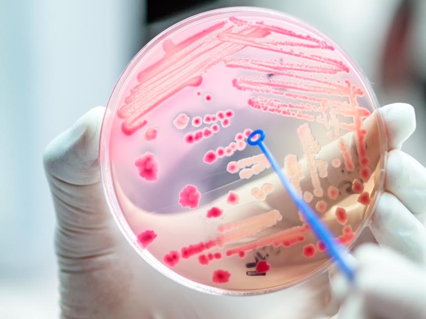 Antibiotics Mutuam