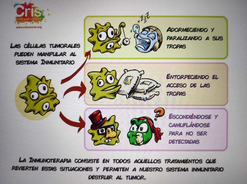 Gerontologia clinica